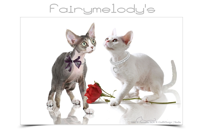 Fairymelody's
