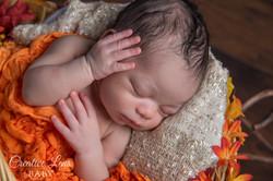 Creative Lens Baby Photography22