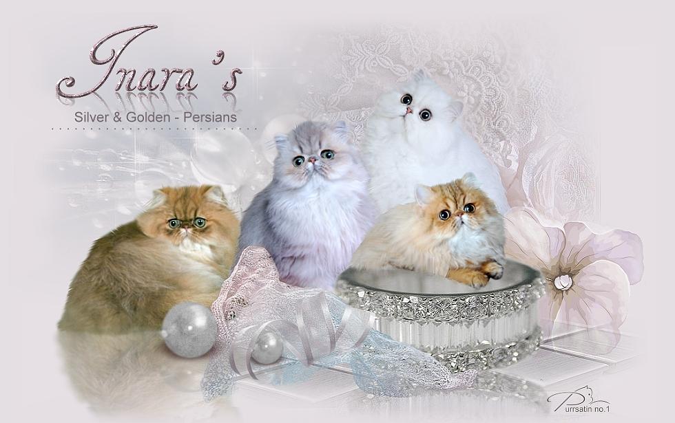 Inara's Persians