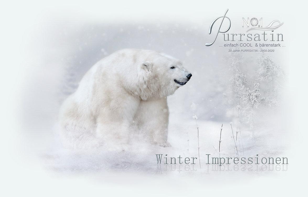 winter2020corona.jpg