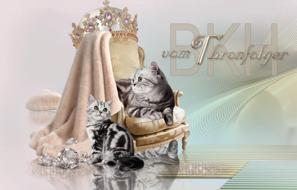 BKH vom Thronfolger