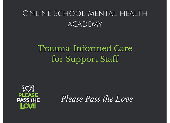 SMH Academy: Trauma Informed Care for Support Staff