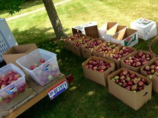 Ruby Mac & Hancock County Farmer's Market