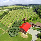 Sugar Creek Orchard, Beaverdam, Ohio