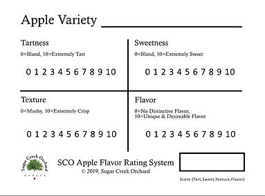 Apple Score Card.JPG