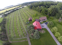 Sugar Creek Orchard - UAV