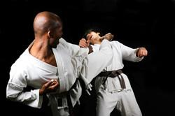 Karate Shito -Ryu