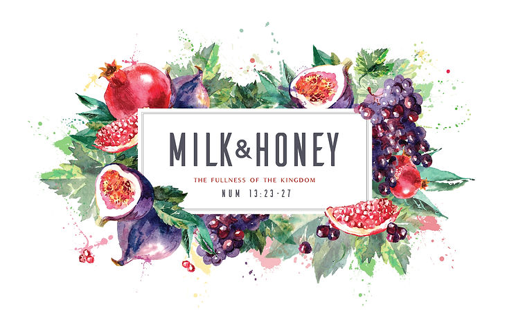 Milk and Honey Ministry Logo Melk en Heuning