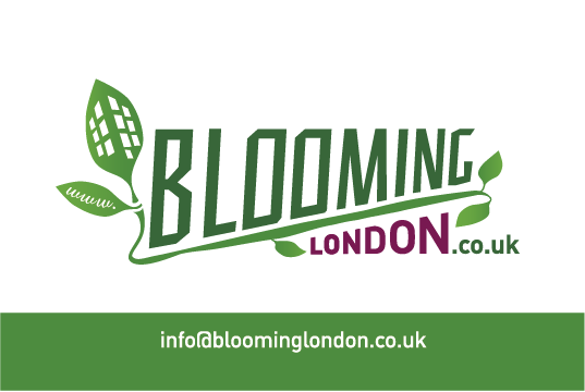 Blooming London BC1-01