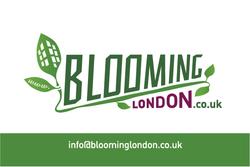 Blooming London BC1-01