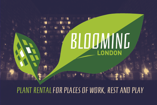 Blooming London BC2-02