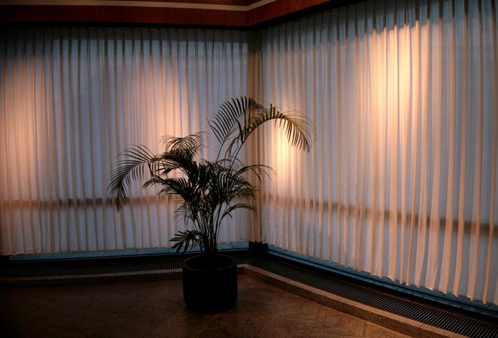 berlin plant_w.jpg