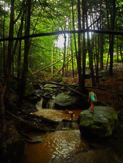children forest stream w.jpg