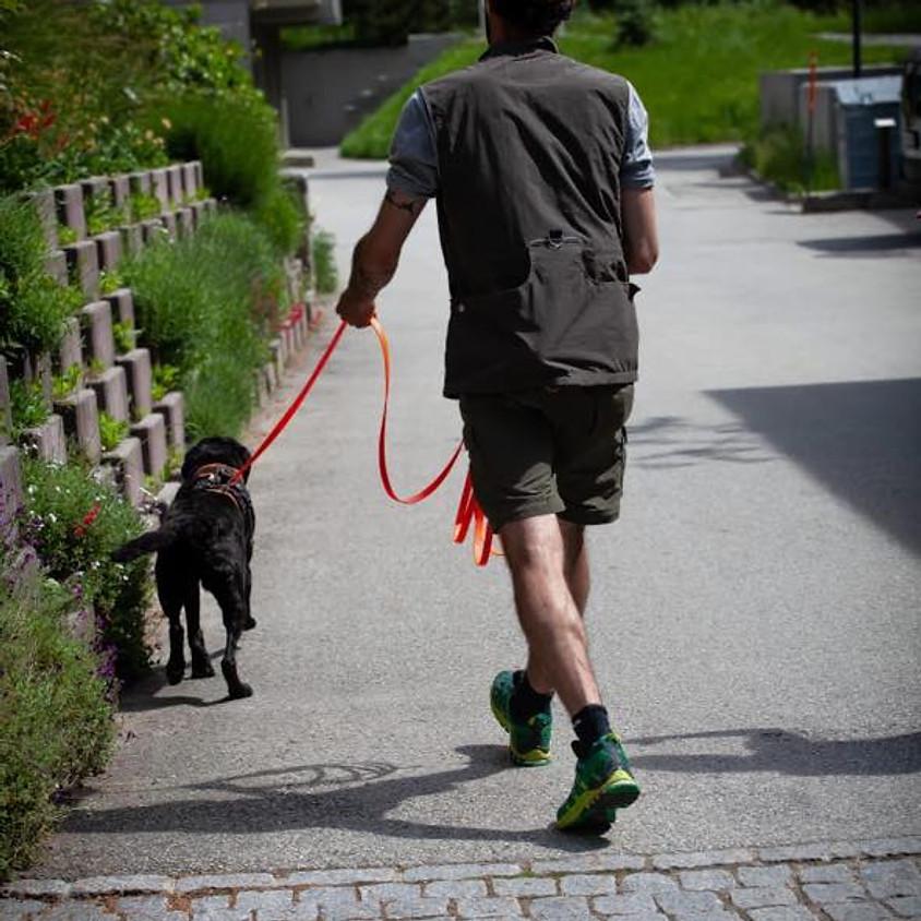 Mantrailing Weekend mit Sam-Dogs, Peter Keller und Team, Raum Oberwallis