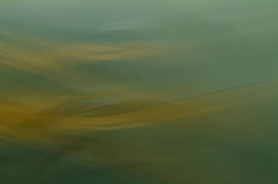 Following Monet variation 18