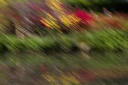 Following Monet variation 2