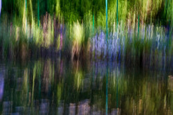 Following Monet variation 3