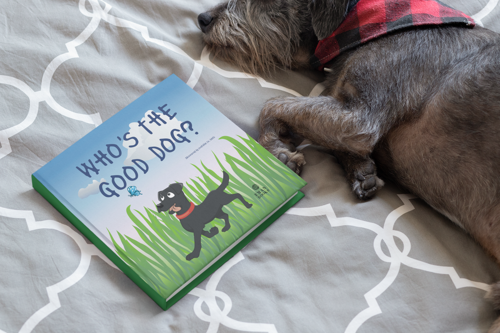 square-book-mockup-featuring-a-small-dog