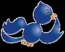 Bird%203D%20hi%20Res_edited.png