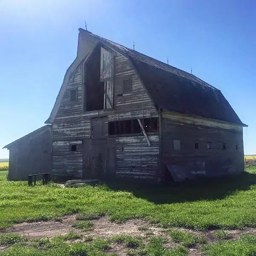 Draft Horse Barn