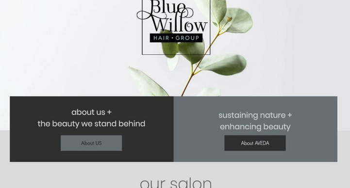 Blue Willow Hair Group