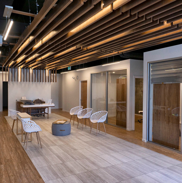 CUSTOM FINISHING: COMMERCIAL SPACE