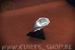 925 gietwerk VR 01 ring bloempje met zirconia champagne b