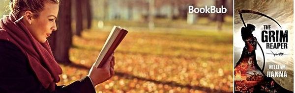 bookbub2.jpg