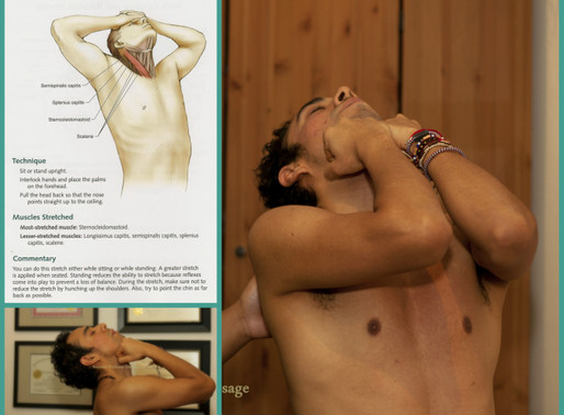 Stretches Related to Lower & Mid-back, Neck, Shoulder and Hip Pain
