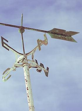wind-rose-1209398_640.jpg