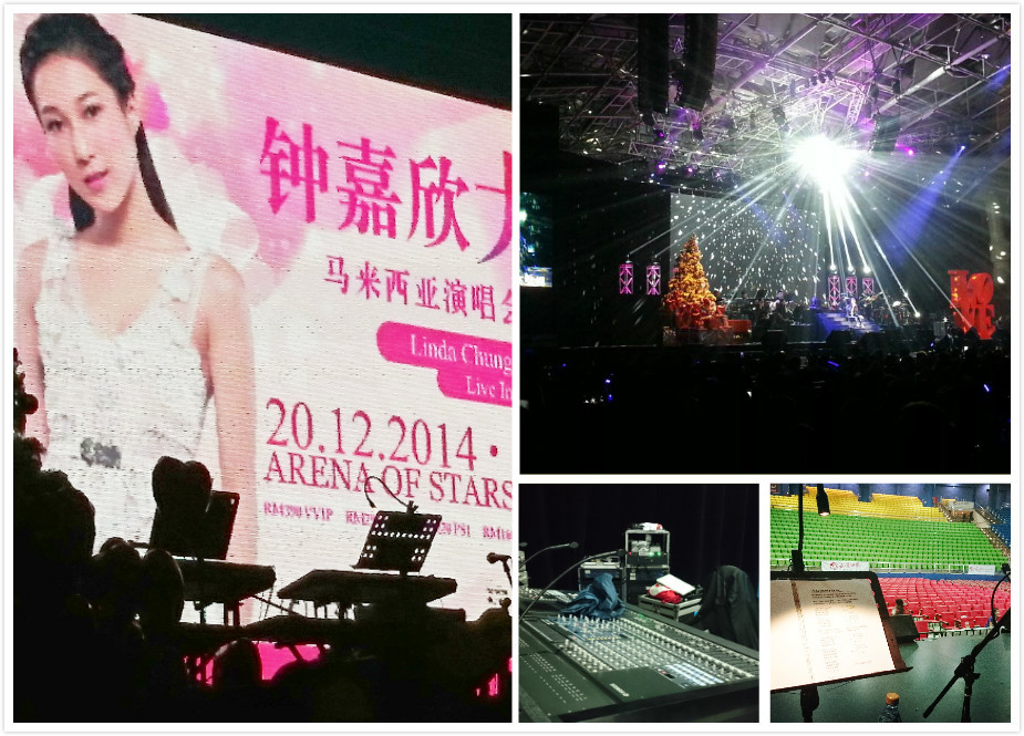 Linda Concert 2.jpg