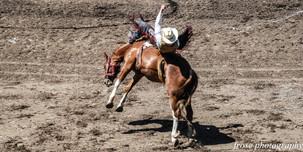 Rodeo 064-1.jpg