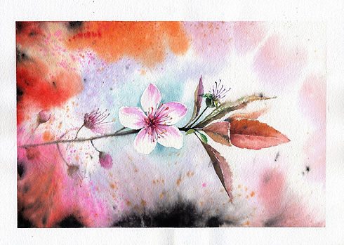 Flower Watercolour.jpg
