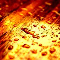 wet wood.jpg
