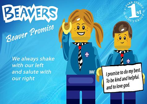 Beaver Promise