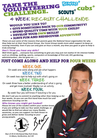 Your local Scout group need you!