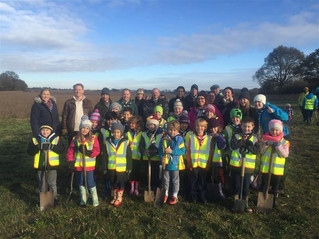 Treetastic Fun at Heartwood Forest