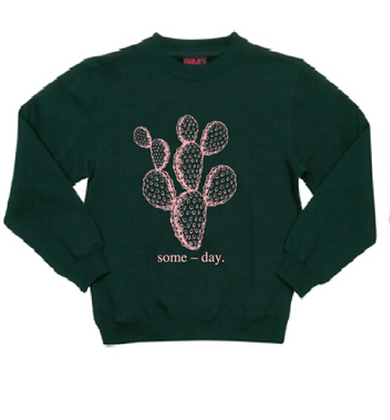 some-day kids sweater ~ green with pink prickly pear