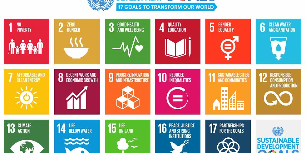 Relatório Global de Desenvolvimento Sustentável