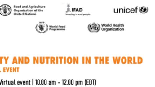 FAO - Estado da Segurança Alimentar e Nutricional no Mundo 2021