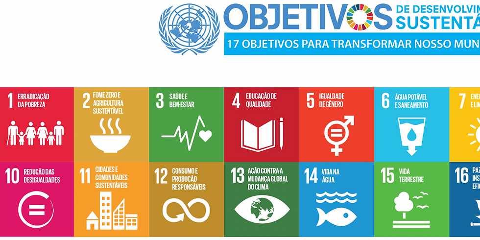 The Partnering Initiative - Mecanismos nacionais para promover a implementação dos ODS