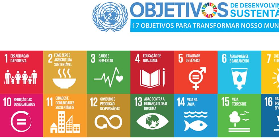 Friends of Governance - Como podemos acelerar a implementação da Agenda 2030?