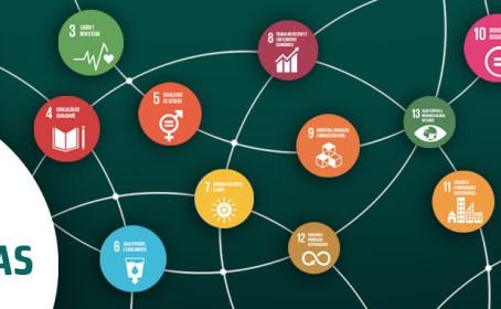GT Agenda 2030 e IDS Abrem Novo Edital Para Eleger Soluções Inovadoras - Inscrições até 4/6/2020