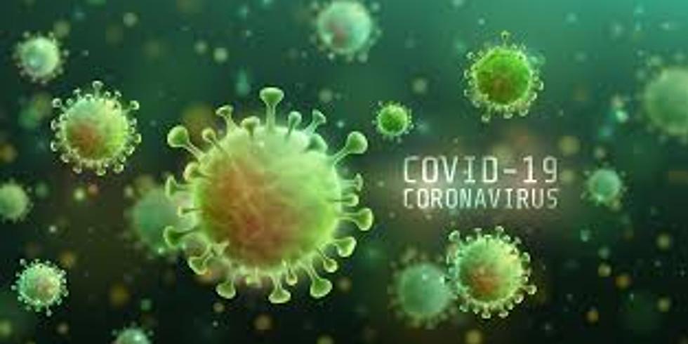 CEM - COVID-19: Partidarismo, Mídia Social e Percepções de Risco à Saúde