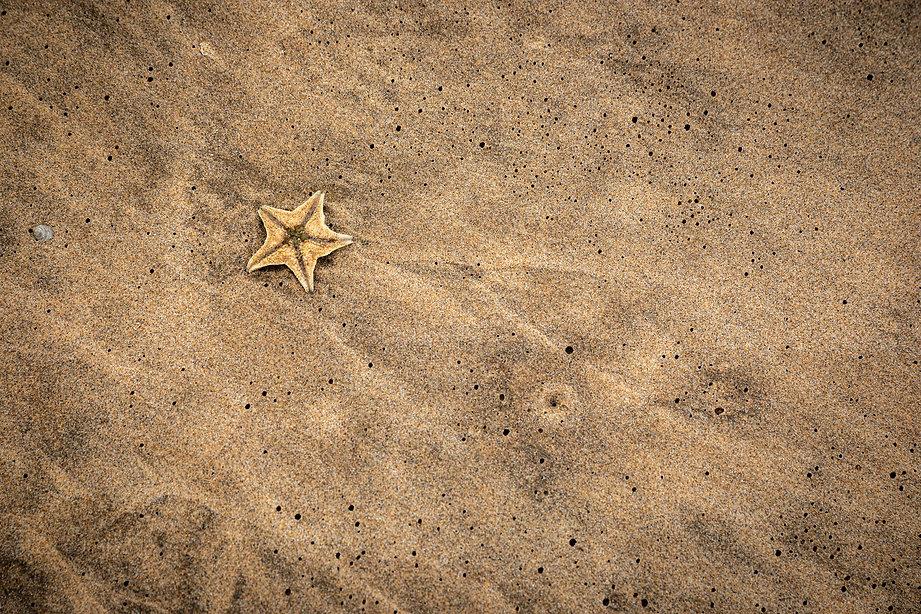 Namibia 526.jpg