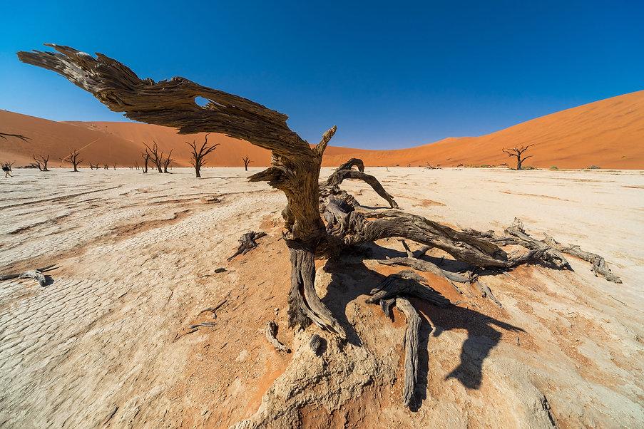 Namibia 384.jpg