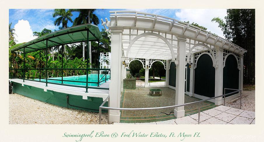 Edison & Fort Winter Estate The Pool