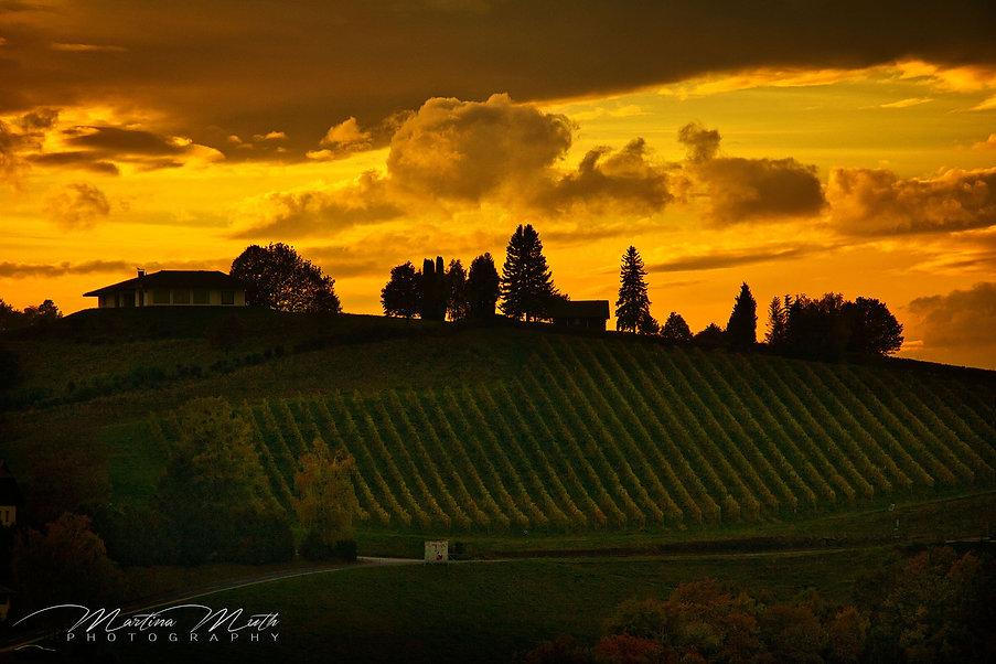Sonnenuntergang Weinberge Südsteiermark