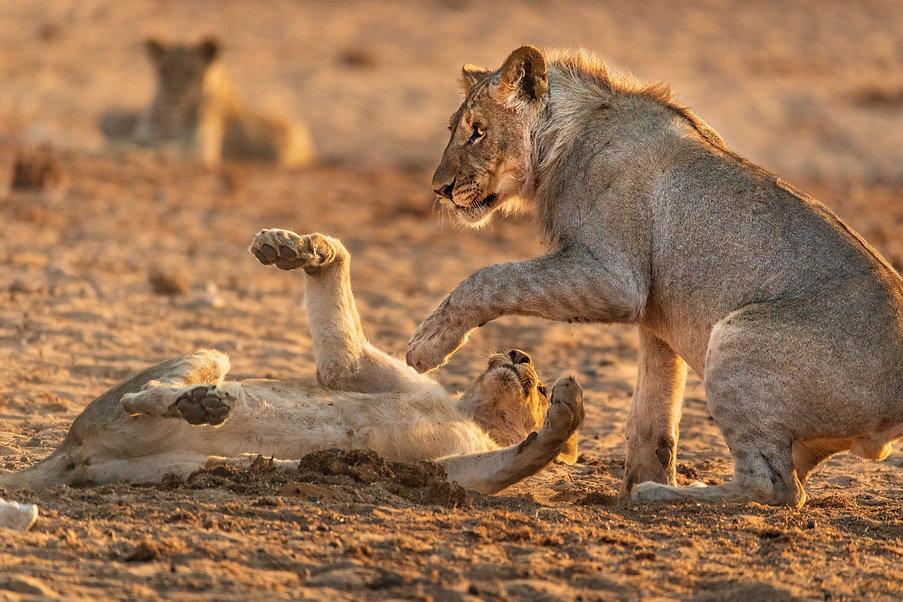 Namibia 1097.jpg
