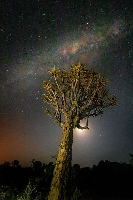 Namibia 150.jpg